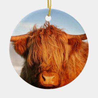 Vaca escocesa das montanhas - Scotland Ornamento De Cerâmica Redondo