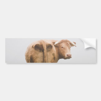 vaca na névoa adesivo para carro