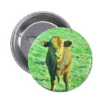Vaca pequena de Brown na grama verde Pastel Botons