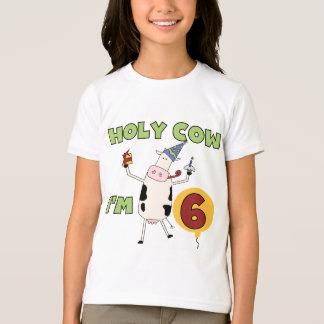 Vaca santamente eu sou 6 camisetas e presentes do