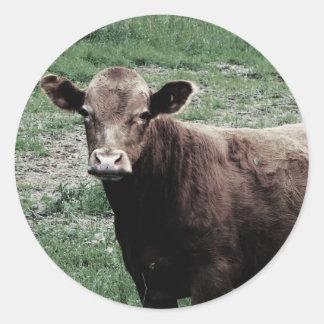 Vaca só adesivo