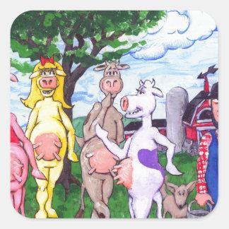 Vacas Chatty coloridas Adesivo Quadrado