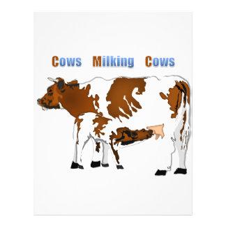 Vacas de ordenha das vacas modelo de panfleto