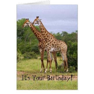 """""""Vai"""" o cartão selvagem dos girafas do feliz anive"""