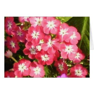 Vale de Badrinath das flores 1 Cartão Comemorativo