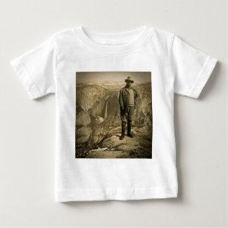 Vale de Yosemite do ponto da geleira de Teddy T-shirts