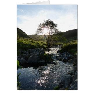 Vale feliz Northumberland, Inglaterra Cartão Comemorativo