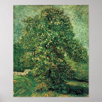 Van Gogh - árvore de castanha na flor Poster