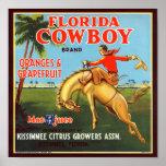 Vaqueiro de Florida Pôsteres
