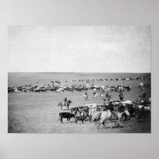 Vaqueiros com o gado na fotografia da escala pôster