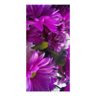 Variedade cor-de-rosa e roxa cartão com foto