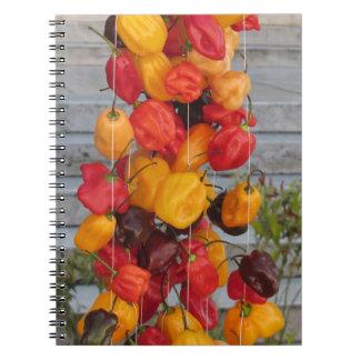 Variedade de pimentas coloridas cadernos espiral