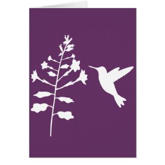 Vazio do cartão de cumprimento do colibri