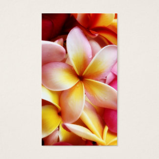 Vazio personalizado flor de Havaí do Frangipani do Cartão De Visitas