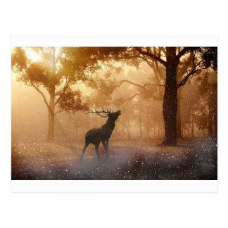 Veado na floresta Mystical Cartão Postal