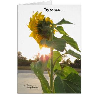 Veja flores da luz do sol através do cartão da