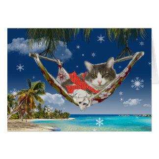 Veludo de algodão no caribe, cartão de cartões de