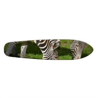 Vendo zebras dobro skate