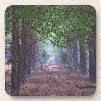 Vento na porta copos da cortiça dos pinhos