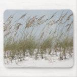 verão do americano da grama da duna da praia mouse pad