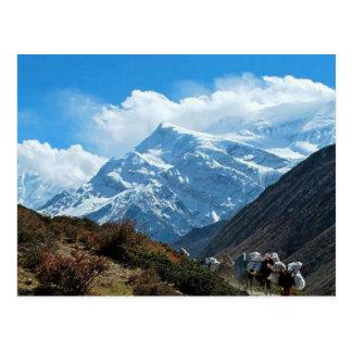Verão do viagem de Himalaya Monte Everest India Cartão Postal