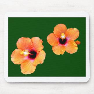 Verde alaranjado BG do hibiscus os presentes de Za Mouse Pad