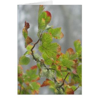 Verde e folhas da floresta de Brown Cartão Comemorativo