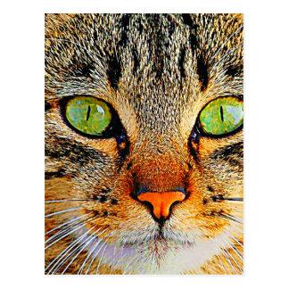 Verde fascinante gato Eyed Cartão Postal