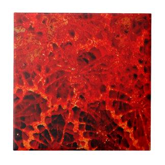 Vermelho coral pedra tingida fossilizada