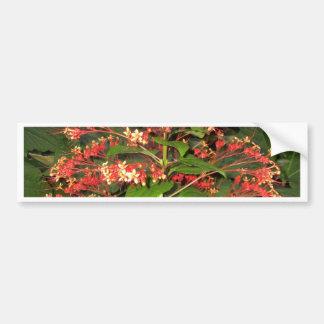 Vestido bonito da planta no vermelho adesivo para carro