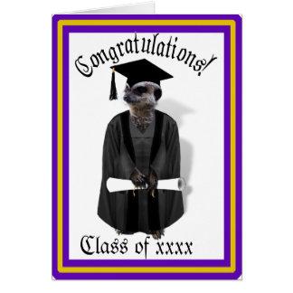 Vestido graduado de Meerkat W/Grey & faixa preta Cartão Comemorativo