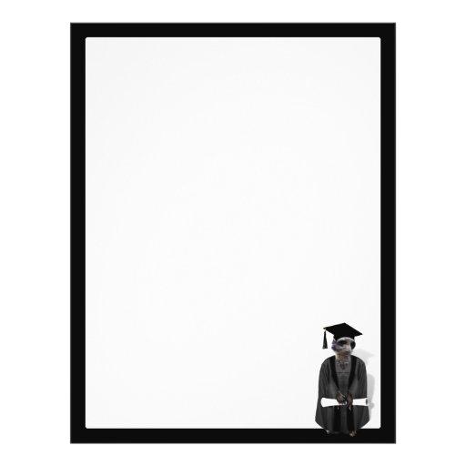 Vestido graduado de Meerkat W/Grey & faixa preta Panfletos Coloridos