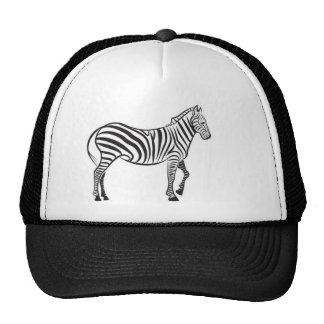 Vetor da zebra boné