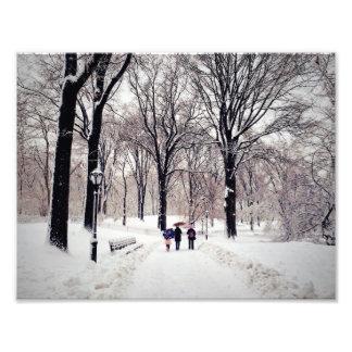 Viagem da família do inverno ao Central Park Impressão De Foto