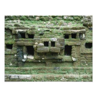 Viagem maia de Belize da máscara de Jaguar das Impressão De Foto