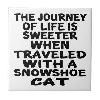 Viajado com gato do sapato de neve