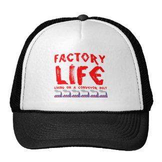 Vida da fábrica bone
