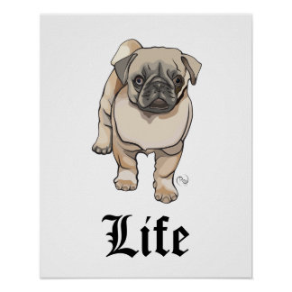 Vida do Pug - poster engraçado da chalaça Pôster
