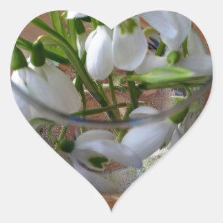 vidro dos snowdrops adesivo coração