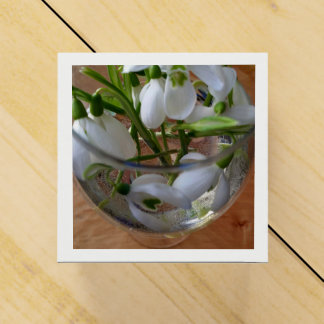 vidro dos snowdrops caixinha