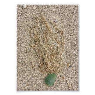 Vidro e grama do mar verde impressão de foto