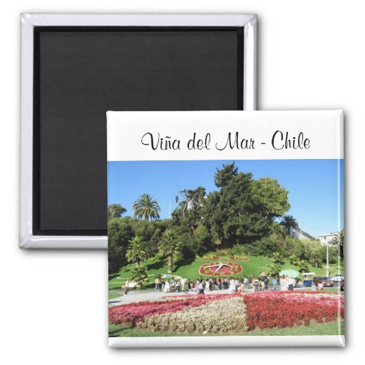 Viña del Mar - o Chile Imas
