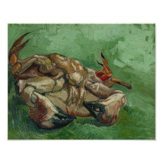 Vincent van Gogh - um caranguejo em sua parte Impressão De Foto