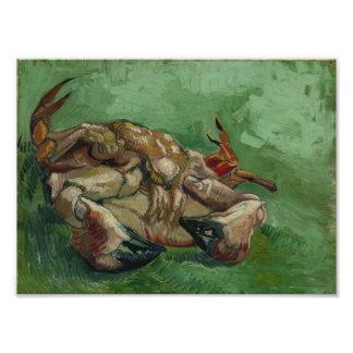 Vincent van Gogh - um caranguejo em sua parte tras Foto Artes