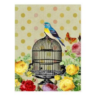 Vintage da flor da gaiola de pássaro cartão postal