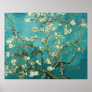 Vintage de florescência Van Gogh floral da árvore Pôster