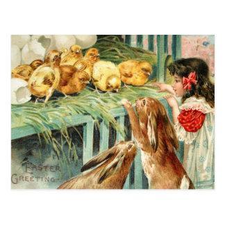 Vintage do cartão da cena da páscoa dos coelhos