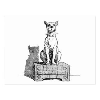 Vintage engraçado do cão cartão postal