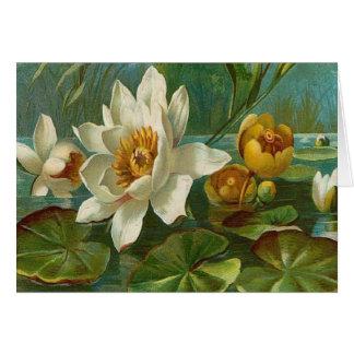 Vintage, flor aquática, aniversário da esposa cartoes