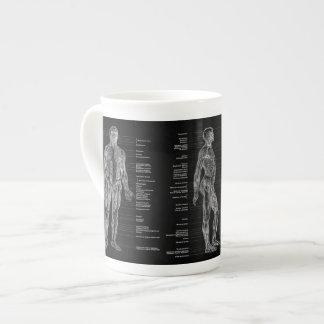 Vintage - músculos humanos etiquetados da anatomia xícara de chá